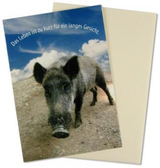 Grußkarte Wildschwein-Das Leben ist zu kurz...