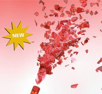 tolle geschenke baccara rosenbl tter regen geschenke online kaufen. Black Bedroom Furniture Sets. Home Design Ideas
