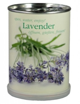 MacFlowers Lavendel aus der Dose